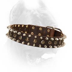 Best decorated leather dog collar