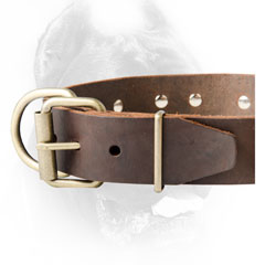 Cane Corso collar with handy buckle