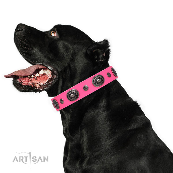 Natural leather dog collar with reliable buckle and D-ring for walking