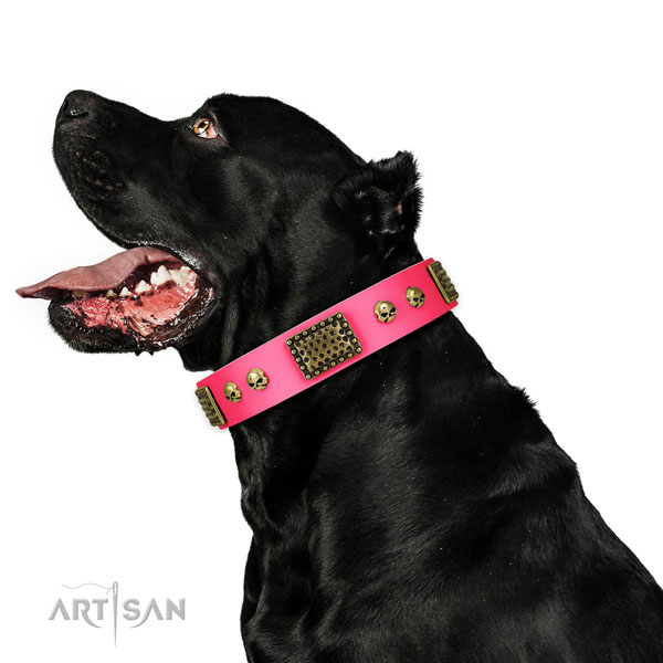 Rust-proof buckle on full grain leather dog collar for easy wearing