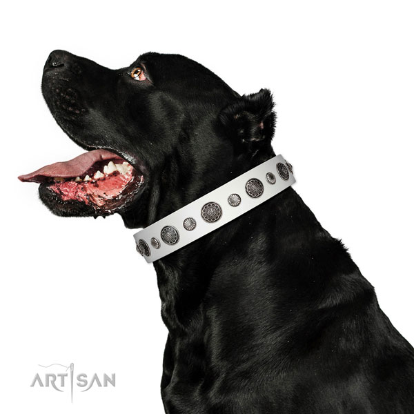 Extraordinary full grain leather dog collar with rust-proof D-ring