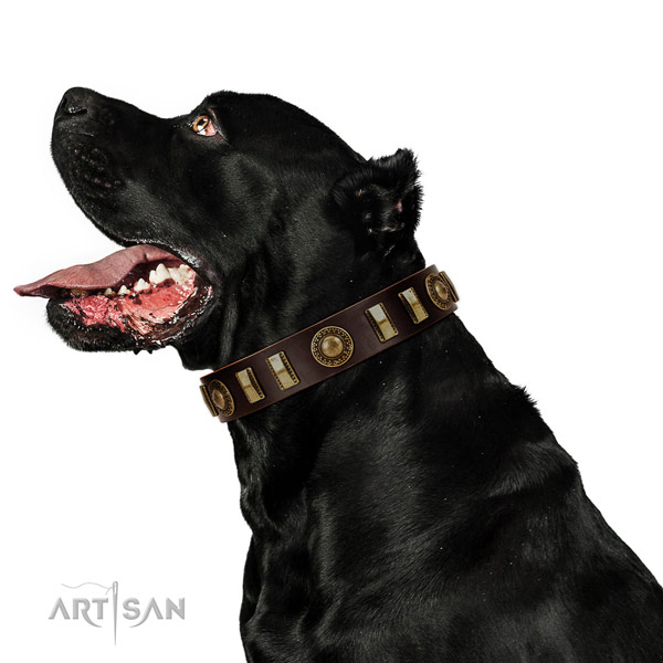 Soft to touch full grain natural leather dog collar with reliable D-ring