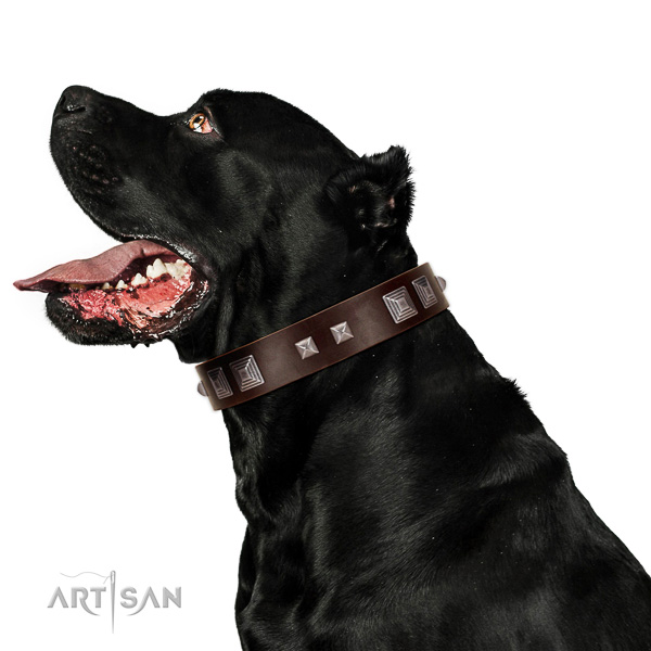 Full grain natural leather dog collar of soft to touch material with designer studs