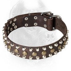 Leather Cane Corso Collar with Pyramids and Half-Ball Studs