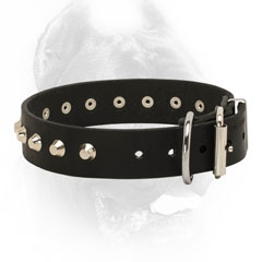 Leather Cane Corso Collar with Silver-Like Hardware