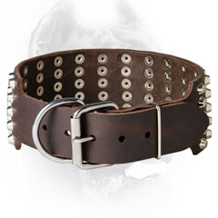 Leather Cane Corso Collar with Rustproof Buckle