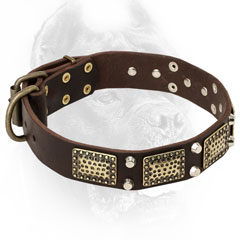 Leather Cane Corso Collar with Nickel and Brass Decorations