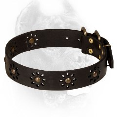 Black Cane Corso Collar for Walking in Style
