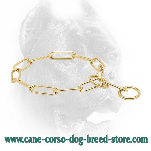 Cane Corso Collar with Fur Saving Links