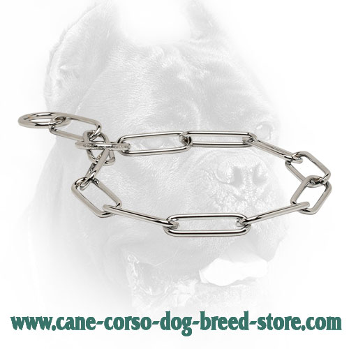 Silver-Like Chrome Plated Cane Corso Fur Saver for Dog Training
