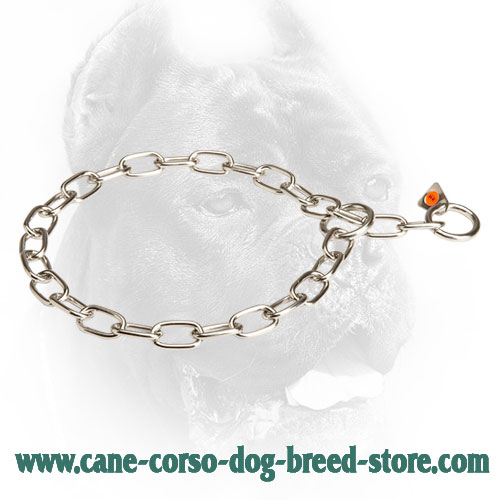 Cane Corso Fur Saver for Dog Training