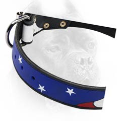 Everyday excellent dog collar