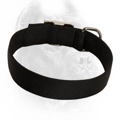 Everyday reliable nylon collar