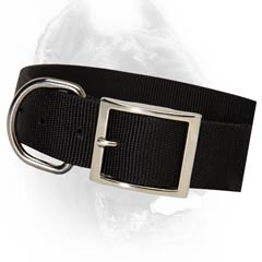 Quality nylon dog collar