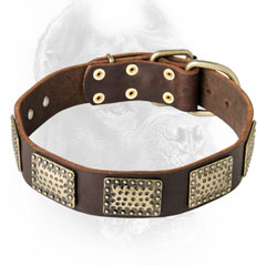 Well-made leather dog collar for walking