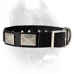 Personalized nylon collar