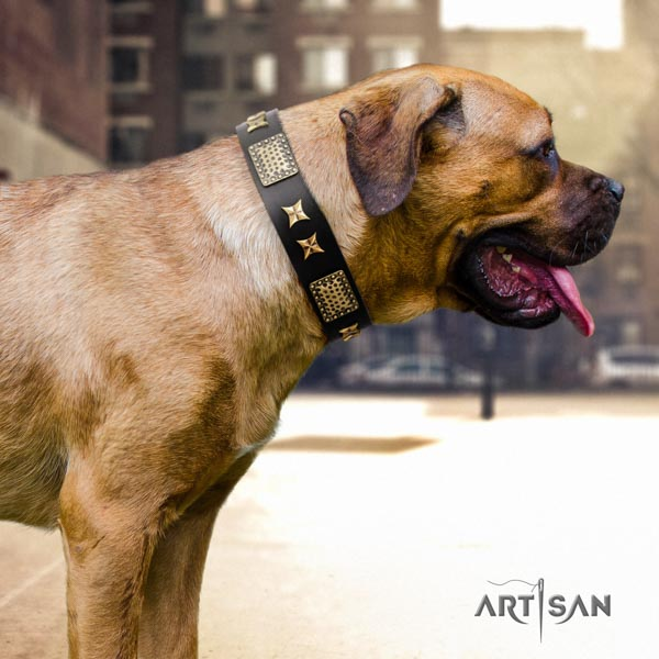 Cane Corso decorated full grain genuine leather collar with durable D-ring