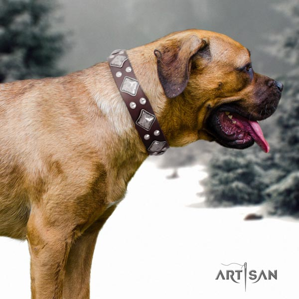 Cane Corso leather collar with corrosion resistant D-ring