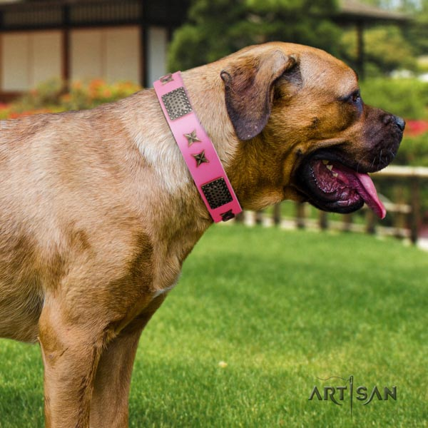 Cane Corso studded leather collar with strong buckle