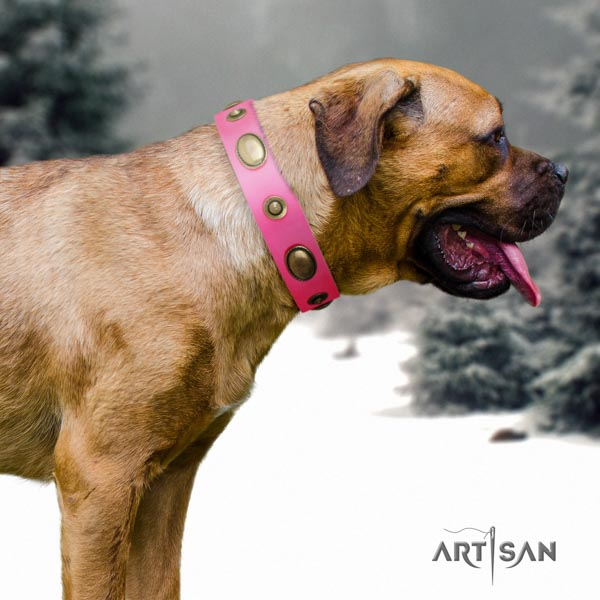 Cane Corso decorated leather collar with reliable D-ring