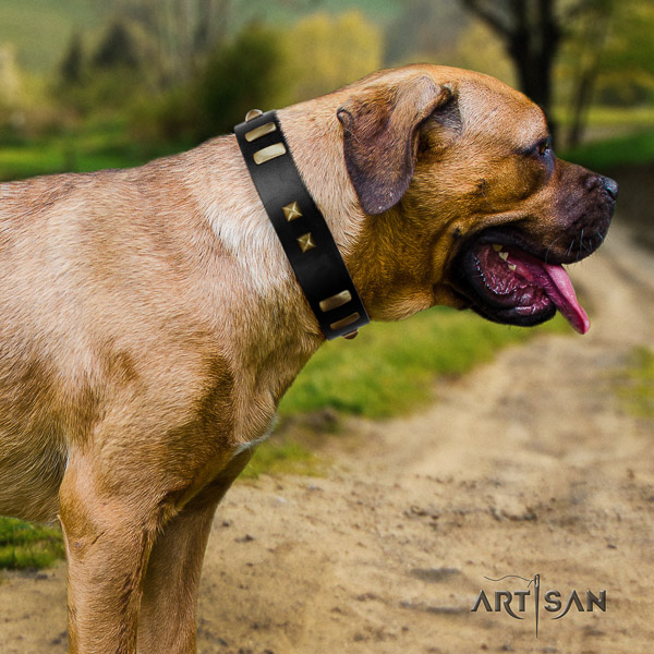 Cane Corso top quality genuine leather dog collar for comfy wearing