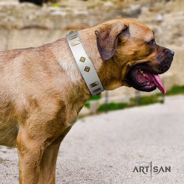 Cane Corso easy to adjust natural genuine leather dog collar for everyday use
