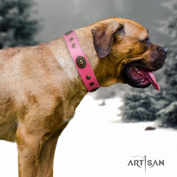 Cane Corso leather collar with corrosion proof hardware