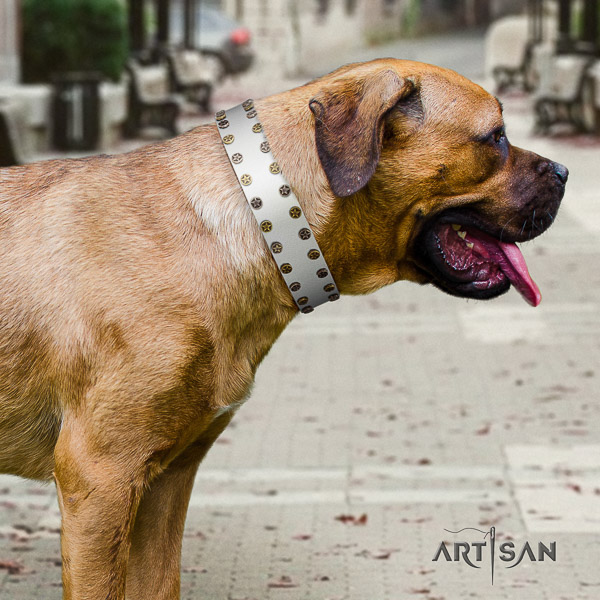 Cane Corso stylish leather dog collar for easy wearing