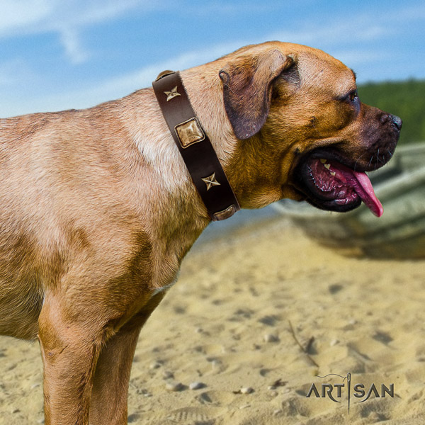 Cane Corso inimitable leather dog collar for daily use
