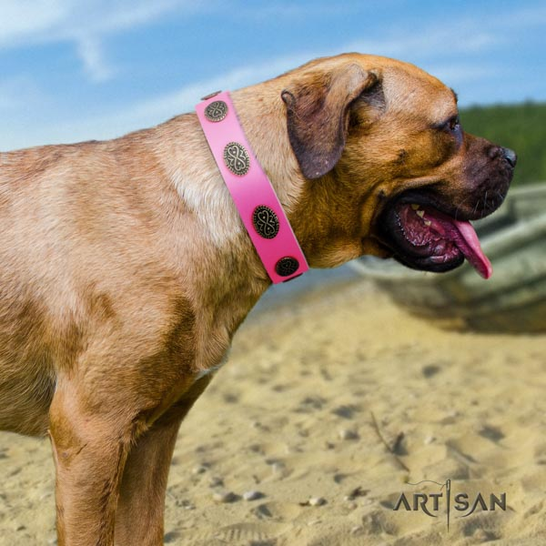 Cane Corso decorated leather collar with rust resistant traditional buckle