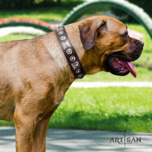Cane Corso natural genuine leather collar with reliable buckle