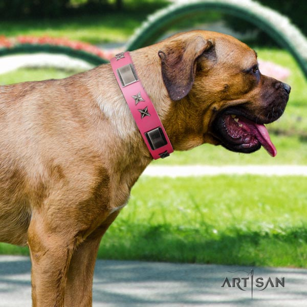 Cane Corso adorned full grain natural leather collar with rust-proof D-ring