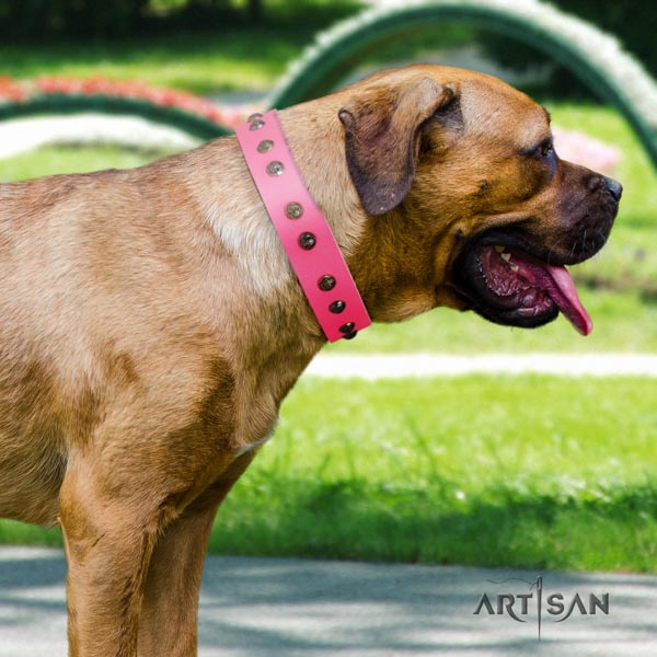 Cane Corso natural genuine leather collar with durable traditional buckle
