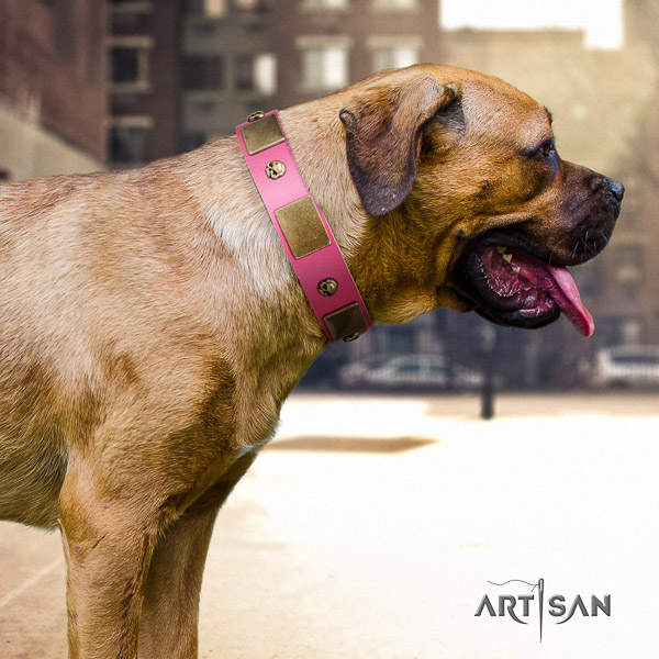 Cane Corso easy to adjust full grain natural leather dog collar for stylish walking
