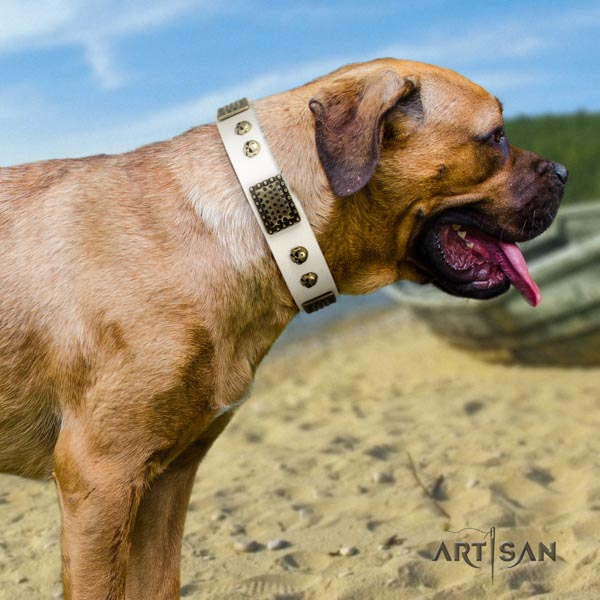 Cane Corso embellished full grain natural leather collar with strong buckle