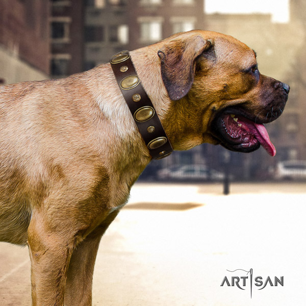 Cane Corso handcrafted genuine leather dog collar for handy use