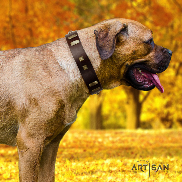 Cane Corso awesome full grain leather dog collar for comfortable wearing