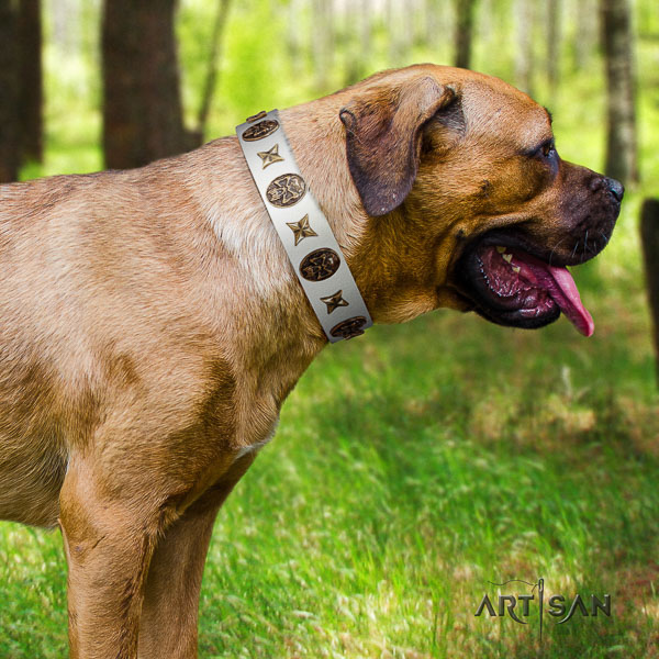 Cane Corso awesome natural genuine leather dog collar for comfortable wearing