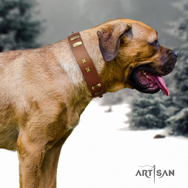 Cane Corso inimitable full grain natural leather dog collar for basic training