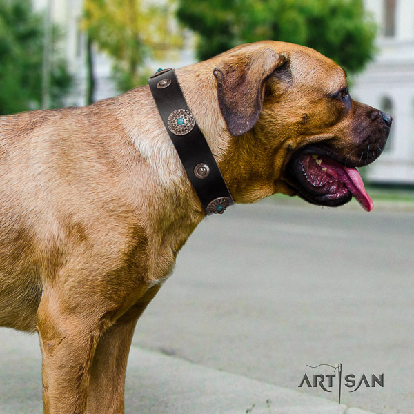 Cane Corso exceptional natural genuine leather dog collar for easy wearing