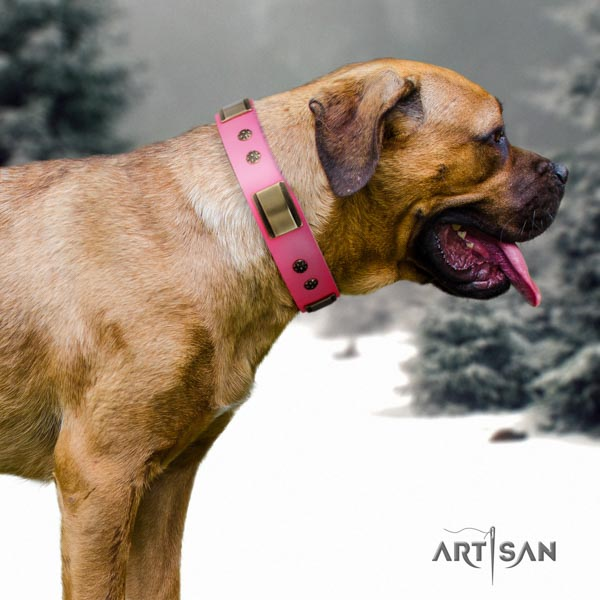 Cane Corso decorated genuine leather collar with strong buckle