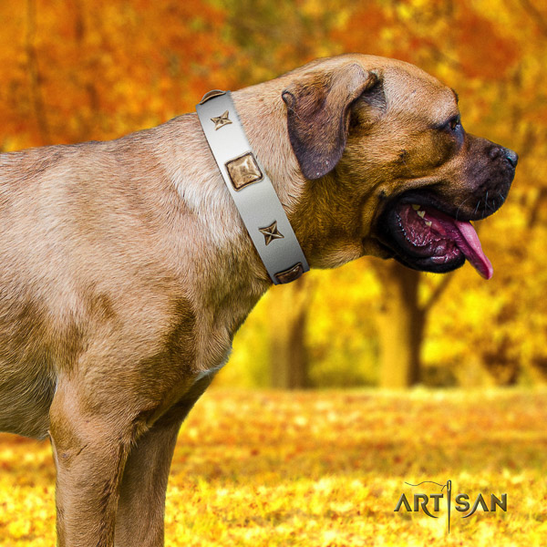 Cane Corso handmade leather dog collar for daily use