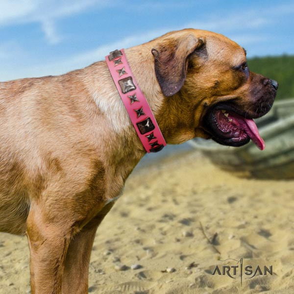 Cane Corso full grain natural leather collar with corrosion proof D-ring