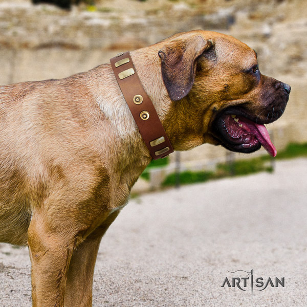 Cane Corso fashionable leather dog collar for comfortable wearing