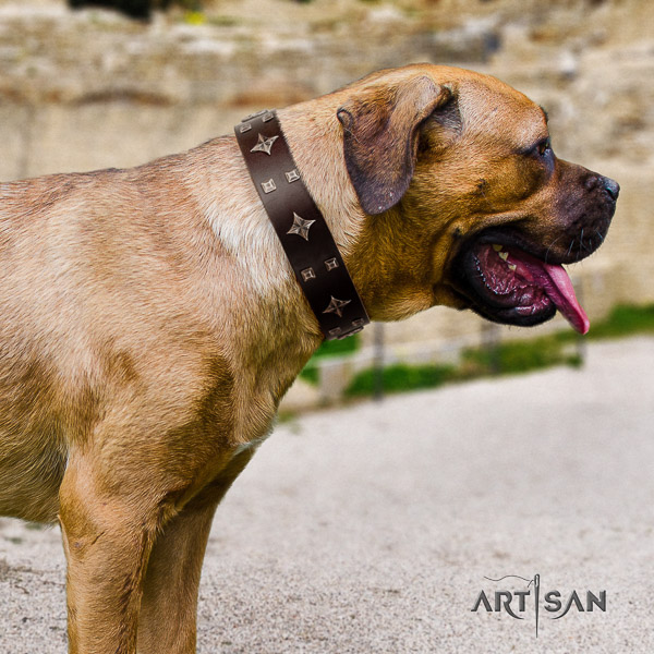 Cane Corso unusual full grain leather dog collar for daily use
