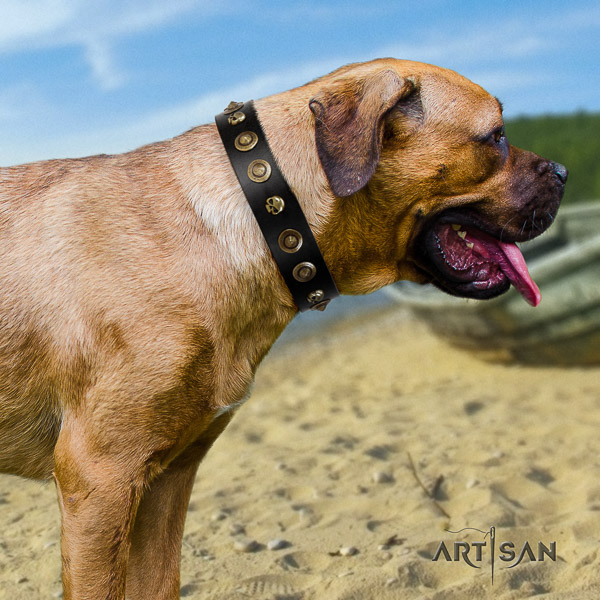 Cane Corso embellished full grain natural leather dog collar for easy wearing