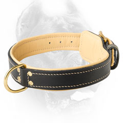 Handmade leather dog collar for Cane Corsos