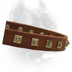 Great value leather buckle dog collar