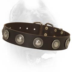 Amazing leather dog collar