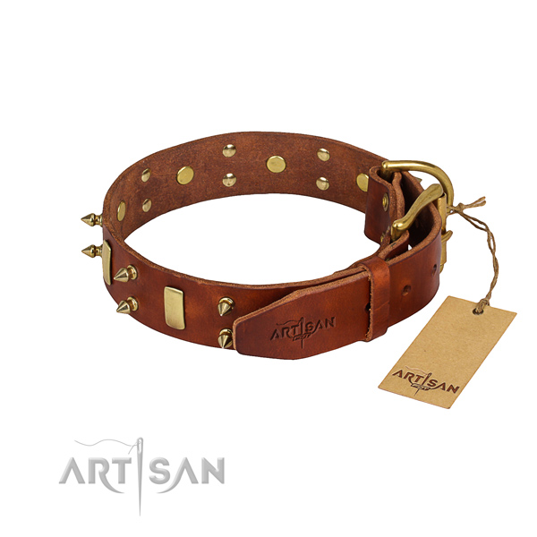 Sturdy leather dog collar with riveted elements